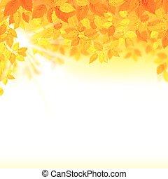 décoration, saison, feuilles, composition, automne