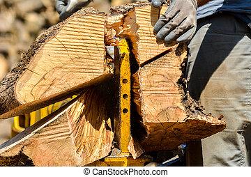 découpage, bois, journaux bord
