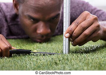 découpage, scissor, herbe, homme, mesuré