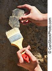 découvertes, archaeology:, nettoyage