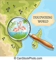découvrir, mondiale, fond