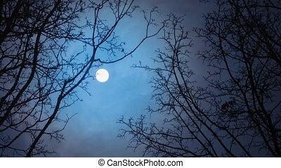 défaillance, pleine lune, /, temps