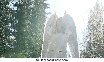défenses, ange blanc
