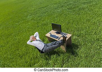 délassant, pensée, champ, bureau vert, homme affaires