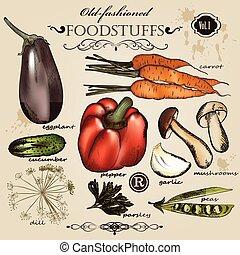 démodé, vecteur, ensemble, vegetab