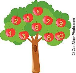 dénombrement, arbre, nombres, pommes rouges