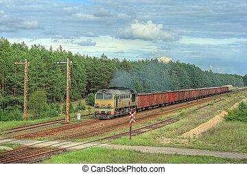 dépassement, train, forêt, fret