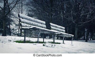 déplacer au-delà, bancs parc, dans, chute neige