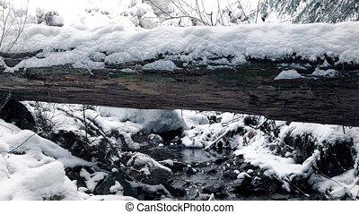 déplacer au-delà, neigeux, bûche, sur, ruisseau