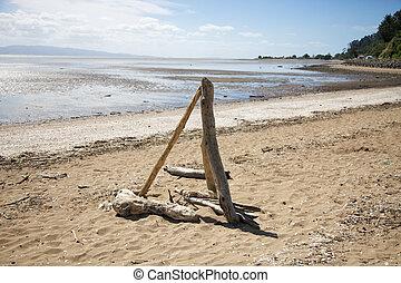 dérive, bois, sur, les, plage.