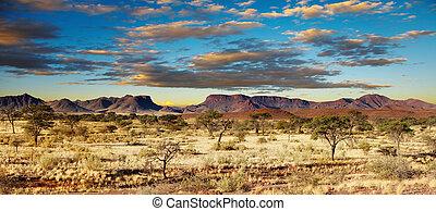 désert, kalahari, namibie