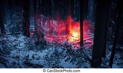 désert, neigeux, flamme, personne, par, promenades