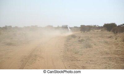 désert, nubian