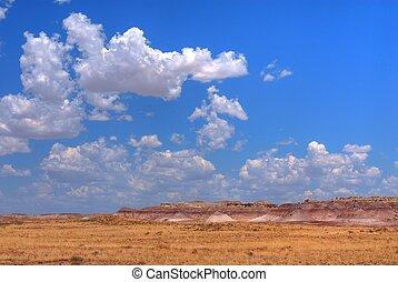 désert peint