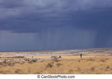 désert, pluie