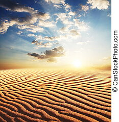 désert, sur, coucher soleil