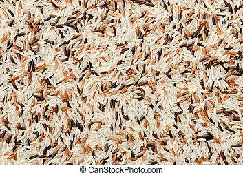 détail, mélange, fond, riz, grains, cru