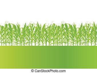 détaillé, écologie, campagne, maïs, illustration, champ, vecteur, fond, paysage