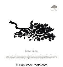 détaillé, branches., silhouette, arbre, pin, arrière-plan noir, blanc, dessin