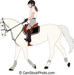 détaillé, couleur cheval, jeune, illustration, élégant, femme, équitation