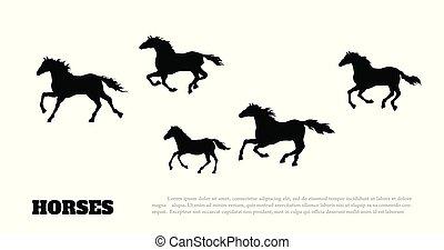 détaillé, silhouette, mustang, dessin, isolé, troupeau, arrière-plan., courant, noir, occidental, vue., horses., blanc, paysage, côté
