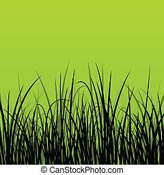 détaillé, usines, illustration, herbe, silhouettes, roseau,...