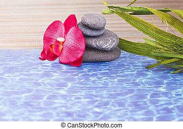 détails, de, quotidiennement, spa, pierres, et, orchidée
