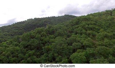 développé, montagne, naturel, arbres., sommets, replete