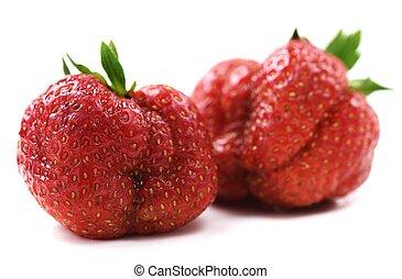 développé, organique, héritage, isolé, laid, fraises, maison