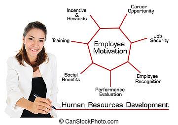 développement, concept, ressources humaines