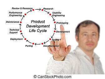 développement, produit, cycle vie