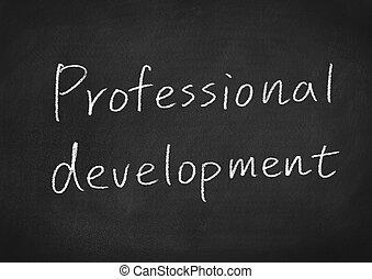 développement, professionnel