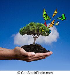développement, soutenable, concept, écologie