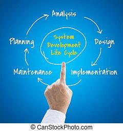 développement, vie, gens, main, systèmes, cycle