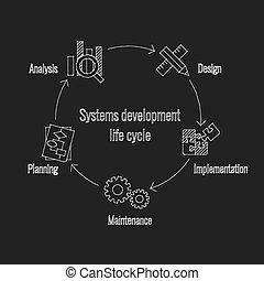 développement, vie, système, cycle
