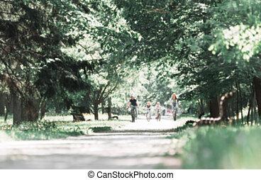día, camino, verano, ciudad del parque, mancha