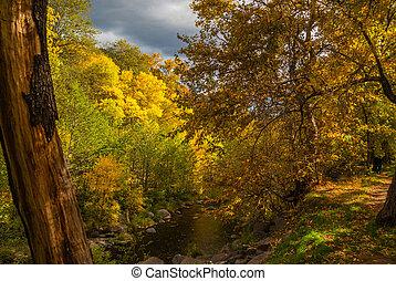 día, sedona, follaje, nublado, otoño