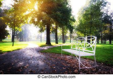 día soleado, en, otoño, parque de la ciudad