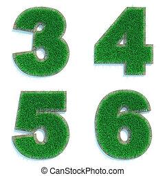dígitos, 3, 4, 5, 6, de, verde, lawn.