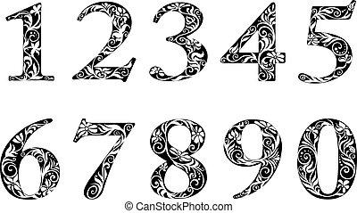 dígitos, elementos florales, números