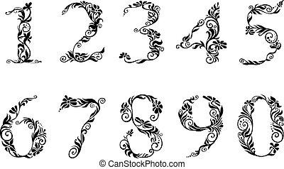 dígitos, floral, conjunto, números, detalles