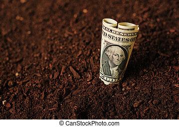 dólar, billetes de banco, efectivo, dinero, en, tierra, suelo, ingresos, en, agricultur
