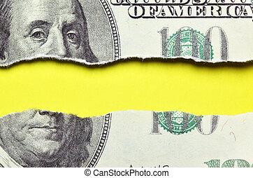 dólares, rasgado, billete de banco