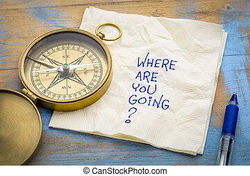 dónde, ser, usted, going?
