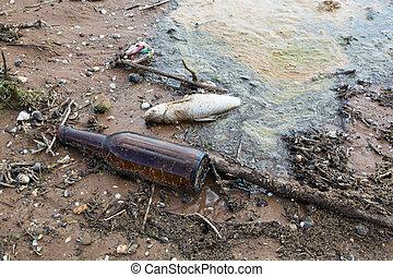 död fisk, bland, smutsa ner, avskräde