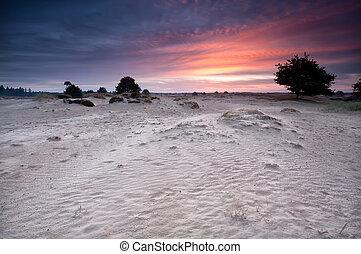 dünenlandschaft, aus, dramatisch,  Sand, Sonnenaufgang