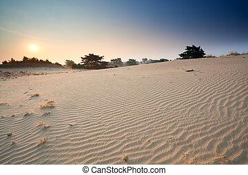 dünenlandschaft, aus, sand, sonnenaufgang