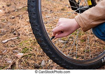 děvče, a, jezdit na kole