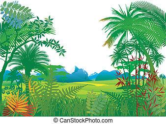dłoń, dżungla, drzewa