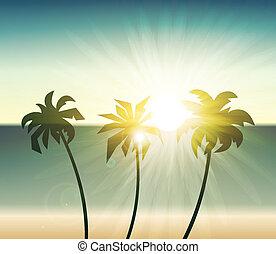 dłoń, sylwetka, zachód słońca, drzewa